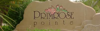 Carpet Cleaning Primrose Point New Mexico